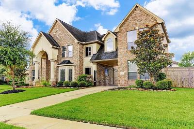 Fort Bend County Single Family Home For Sale: 9226 Hummingbird Lane