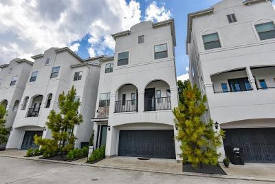 Houston Single Family Home For Sale: 611 Mazal Lane