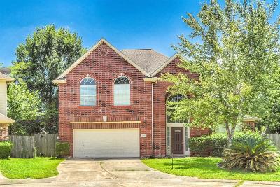 Houston Single Family Home For Sale: 14915 Lindenbrook Lane