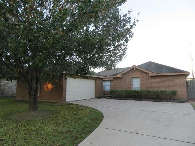 Friendswood Single Family Home For Sale: 16747 Starboard View Drive