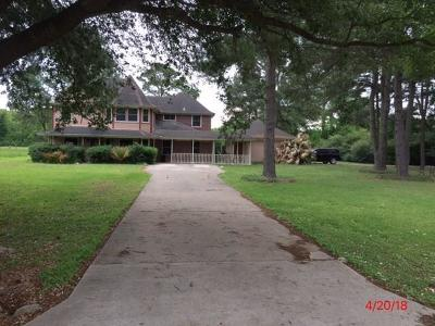 Tomball Single Family Home For Sale: 19012 High Meadow Lane