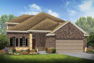 Rosenberg Single Family Home For Sale: 6110 Copper Grove Lane