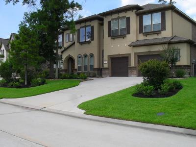 The Woodlands Single Family Home For Sale: 220 E Tupelo Green Circle