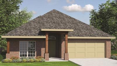Rosenberg Single Family Home For Sale: 7503 Summer Night
