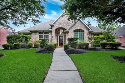 Houston Single Family Home For Sale: 14522 Summerwood Lakes Drive