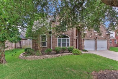 Single Family Home For Sale: 14231 Orion Drive