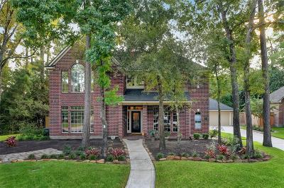 The Woodlands Single Family Home For Sale: 3 S Dragonwood Place