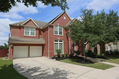 Pearland Single Family Home For Sale: 13801 Greenblade Drive