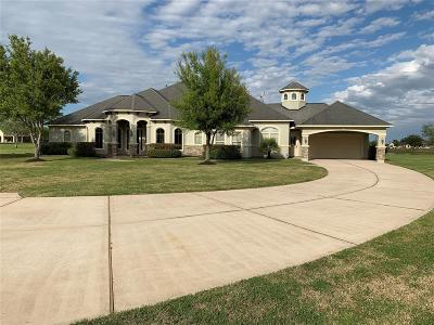 Tomball Single Family Home For Sale: 20222 Stone Cannon Court
