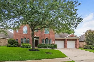 Sugar Land Single Family Home For Sale: 1506 Thunder Lake Lane