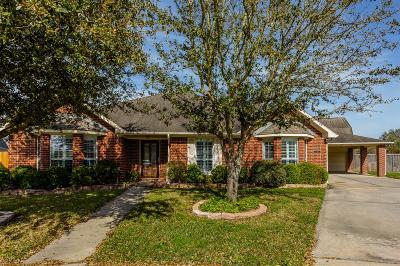 Pearland Single Family Home For Sale: 11201 Harris Avenue