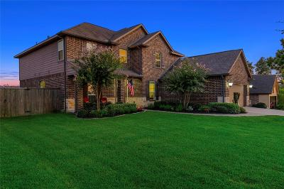 Single Family Home For Sale: 27073 Palo Pinto Trail W