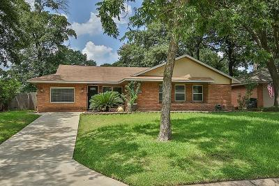 Houston Single Family Home For Sale: 1138 Stonecrest Drive