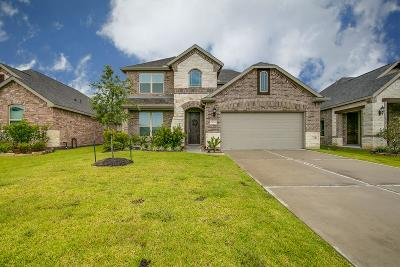League City Single Family Home For Sale: 1424 Coleto Creek Lane