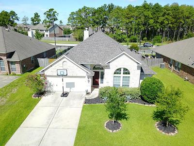 Tomball Single Family Home For Sale: 18619 Oxenberg Manor