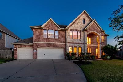 Katy Single Family Home For Sale: 26015 Pebble Terrane Lane