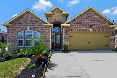Friendswood Single Family Home For Sale: 3501 Arezzo Circle