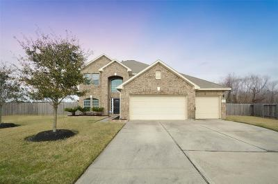 Dickinson, Friendswood Single Family Home For Sale: 2922 Rippling Brook Lane