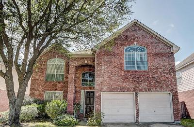 Houston Single Family Home For Sale: 16822 Stoneside Drive