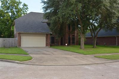Katy Single Family Home For Sale: 20511 Serringdon Drive
