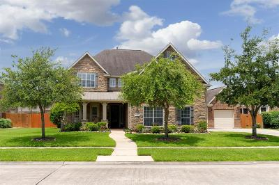 Friendswood Single Family Home For Sale: 2504 Pebble Lodge Lane