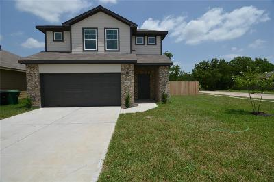 Houston Single Family Home For Sale: 5523 Abundant Life Lane