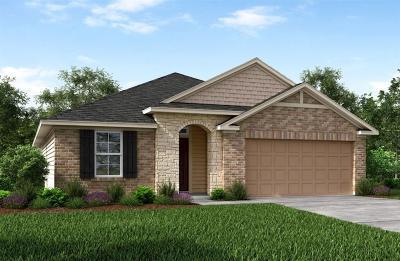 Rosenberg Single Family Home For Sale: 1018 Fuchsia Drive