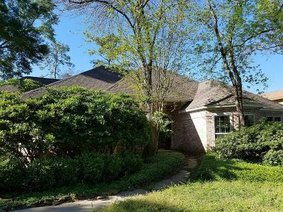 Houston Single Family Home For Sale: 10531 Moorcreek Drive