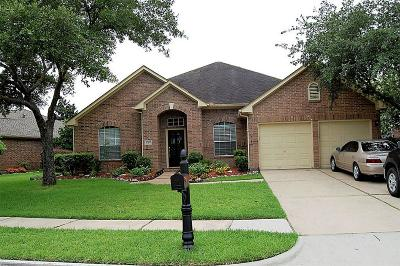 Friendswood Single Family Home For Sale: 17306 Grey Mist Drive