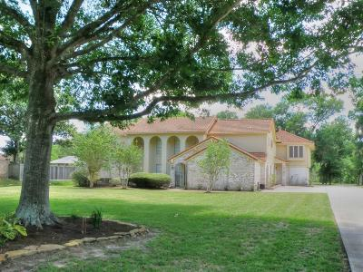 Friendswood Single Family Home For Sale: 2210 Airline Drive
