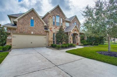 Manvel Single Family Home For Sale: 3925 Lupin Bush Lane