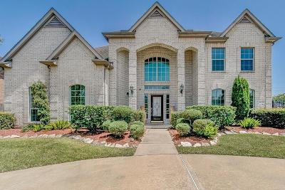 Sugar land Single Family Home For Sale: 10727 Newport Bridge Lane