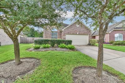 Pearland Single Family Home For Sale: 1634 Berlino Drive