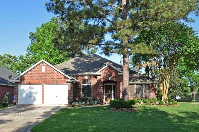 Humble Single Family Home For Sale: 18327 Bluewater Cove Drive
