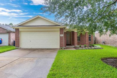 Katy Single Family Home For Sale: 19723 Twin Canyon Court