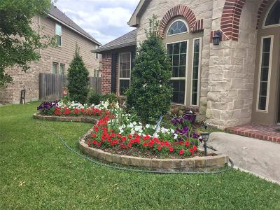 Pearland Single Family Home For Sale: 12410 Ivy Run Lane