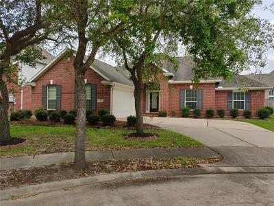 Friendswood Single Family Home For Sale: 3103 Maple Hill Drive