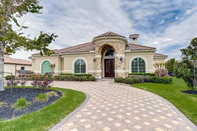Houston Single Family Home For Sale: 9510 Vintage Springs Lane Lane