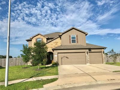Baytown Single Family Home For Sale: 8502 White Iris Court