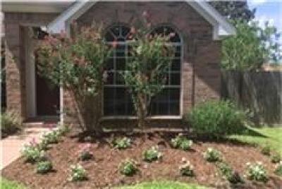 Sugar Land Single Family Home For Sale: 638 Presley Way