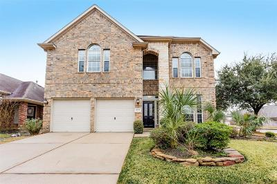 Tomball Single Family Home For Sale: 8223 Hayden Cove Drive
