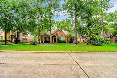 Single Family Home For Sale: 30 S Old Cedar Circle