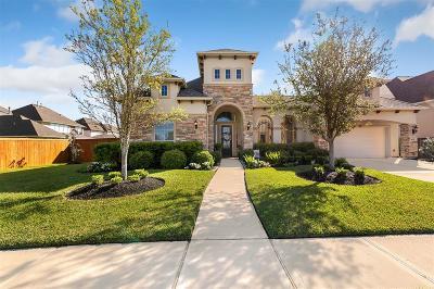 Manvel Single Family Home For Sale: 4301 Buffalo Berry Lane