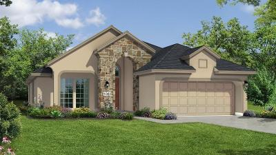 Fulshear Single Family Home For Sale: 5602 Red Wind