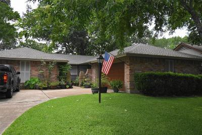 Houston Single Family Home For Sale: 2318 Chanay Lane