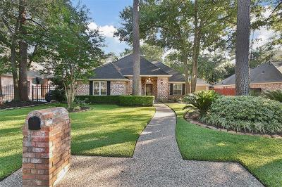 Tomball Single Family Home For Sale: 15715 Birchview Drive