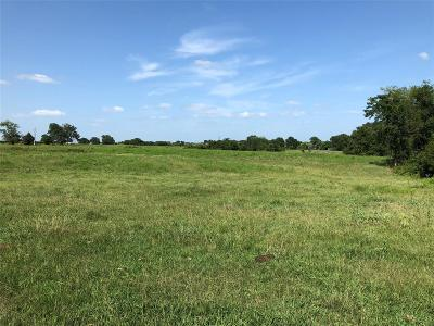 Lee County Country Home/Acreage For Sale: 00 Cr 430