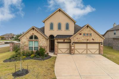 Single Family Home For Sale: 2951 Buffalo Springs Lane