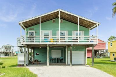Galveston Single Family Home For Sale: 4135 Fort Bend Drive