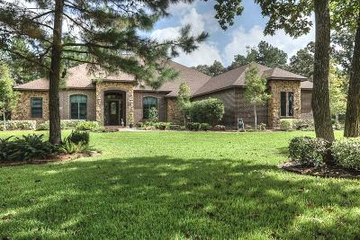Montgomery Single Family Home For Sale: 10137 Crown Ranch Boulevard